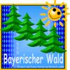 Homepage Erstellung in Niederbayern Werbeagentur und Internetagentur